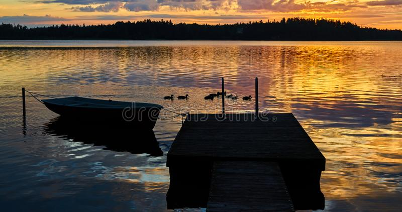 Surise на озере Маленькие утки имеют завтрак стоковая фотография rf