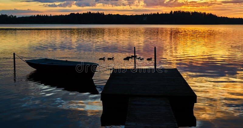 Surise på sjön Små änder har frukosten royaltyfri fotografi