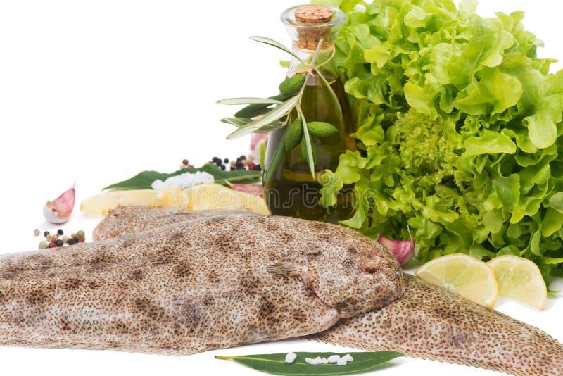 Surowa błonie podeszwa z pikantność, cytryną i oliwa z oliwek, zdjęcia stock