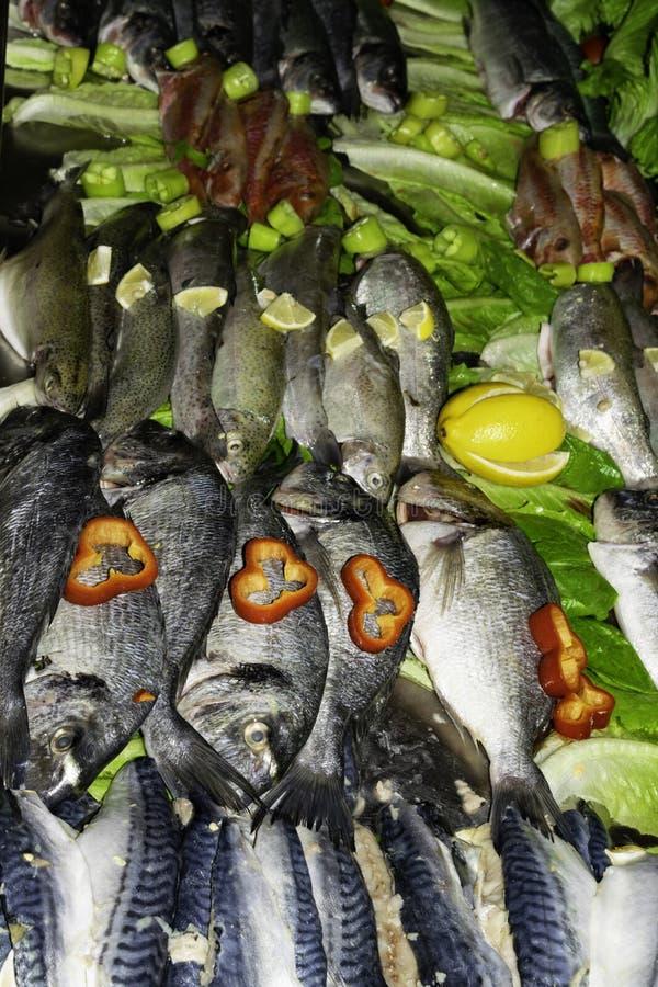 surowa czerwieni ryba, dorada lub denny leszcz, pstrąg, makrela z warzywami w rynku, zdrowego łasowania pojęcia odgórny widok zdjęcia royalty free