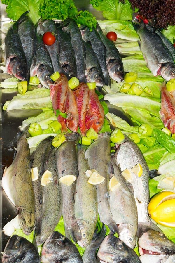 surowa czerwieni ryba, dorada lub denny leszcz, pstrąg z warzywami w rynku, zdrowego łasowania pojęcia odgórny widok zdjęcie stock