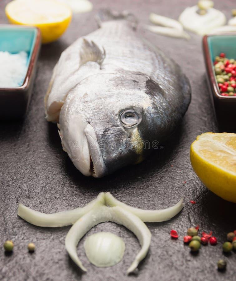 Surowa dorado ryba z cytryną, cebula i pikantność na czerni, drylujemy tło zdjęcie stock