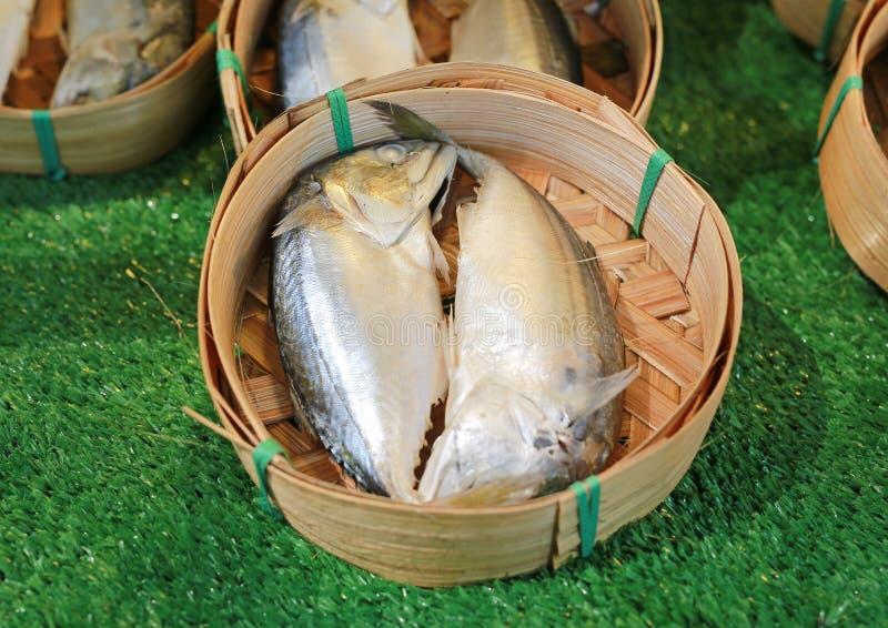 Surowa makrela łowi w round bambusowym koszu dla sprzedaży w targowym Thailand zdjęcie stock