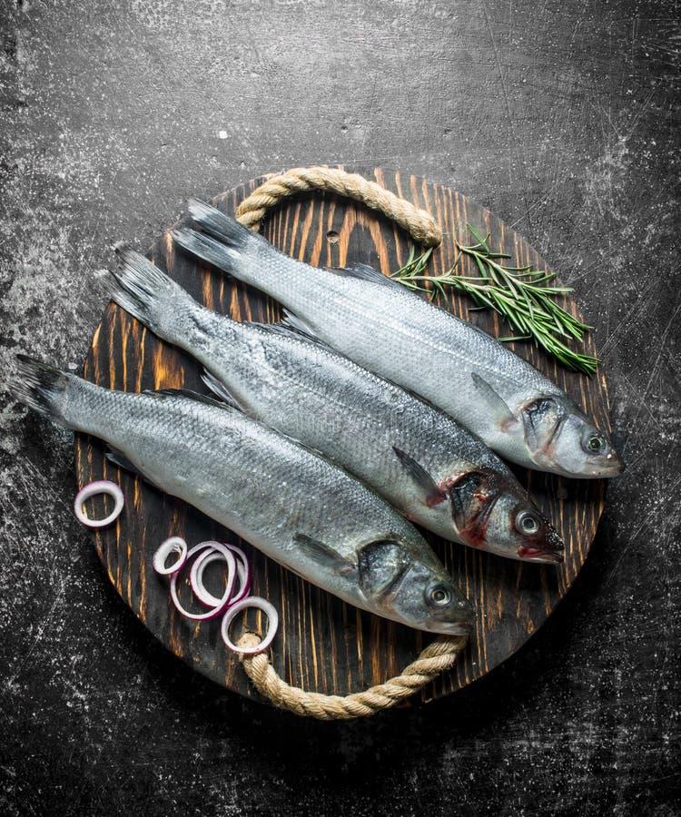 Surowa ryba na starej tacy z sprig rozmaryny zdjęcie royalty free