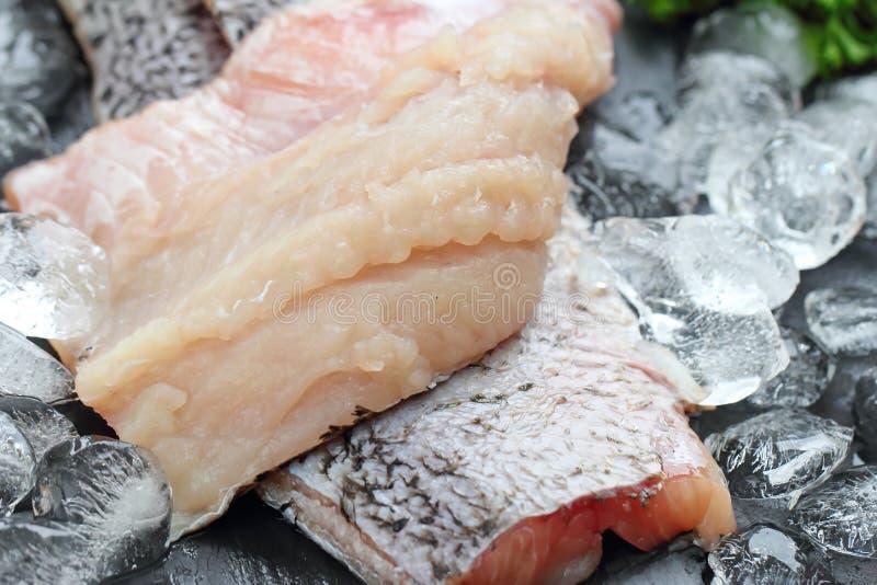 Surowa ryba przygotowywająca dla gotować zdjęcia stock