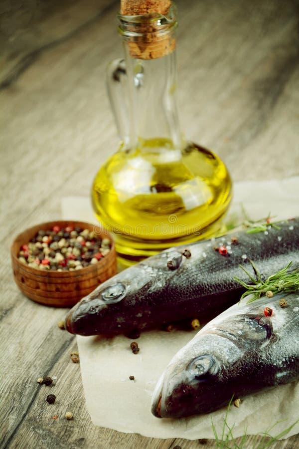 Surowa seabass ryba na drewnianej desce fotografia stock