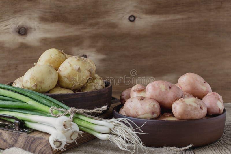 Surowe organicznie grule i wiosny zielona cebula, czosnek czerwona grula zdjęcie stock