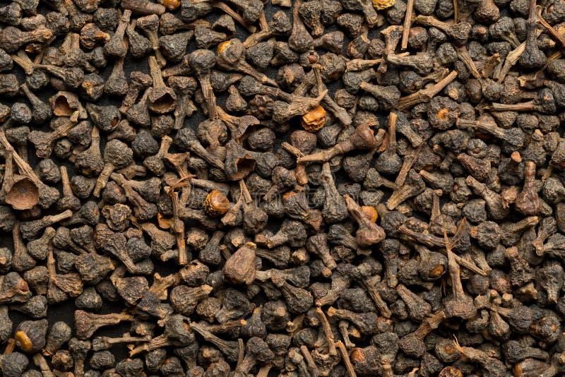 Surowe, suszone pąki cynamonowe widok przypraw płaski szkielet wypełniający tło obraz stock