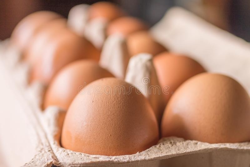 Surowi kurczaków jajka w jajecznym pudełku zdjęcie stock