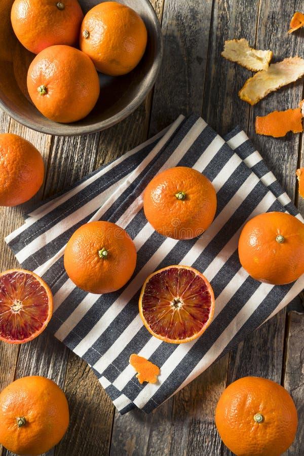 Surowi Organicznie Rubinowi tango Krwionośnej pomarańcze Clementines zdjęcie royalty free