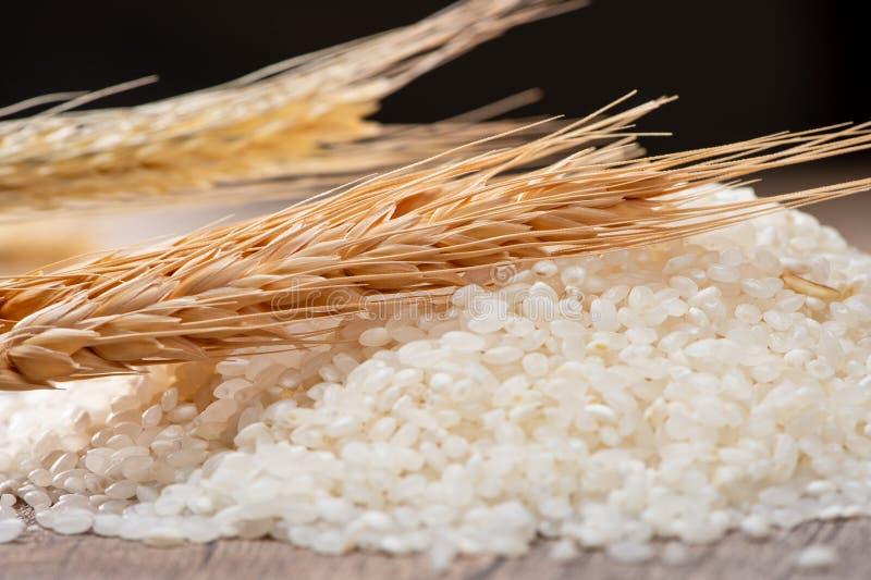 Surowi ryż i banatka zdjęcie stock