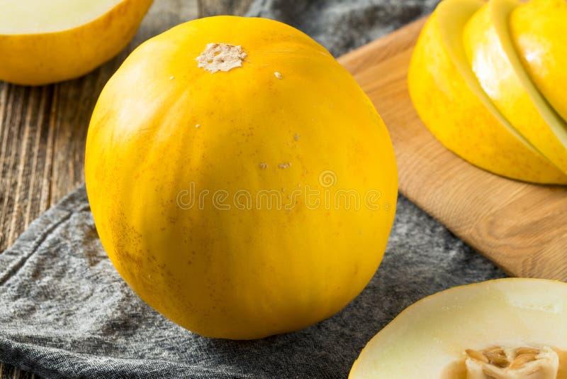 Surowy Żółty Organicznie Kanarowy melon zdjęcia stock