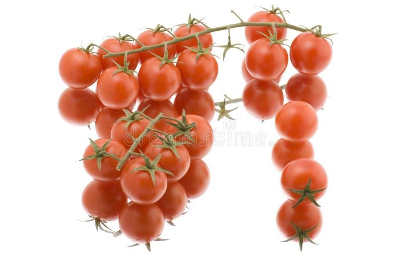 surowy dojrzały pomidorowy biel fotografia royalty free