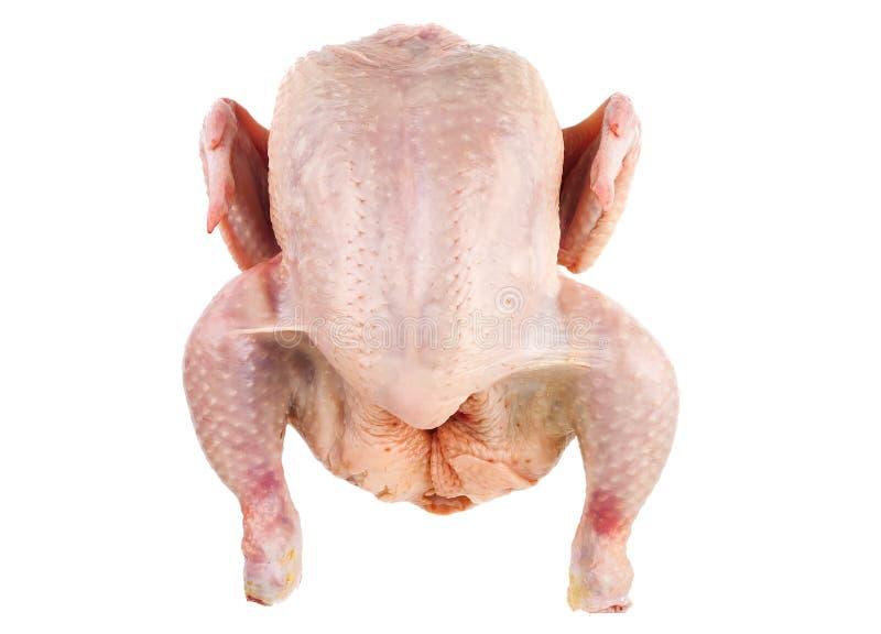 Surowy i świeży kurczak corp na bielu zdjęcia royalty free
