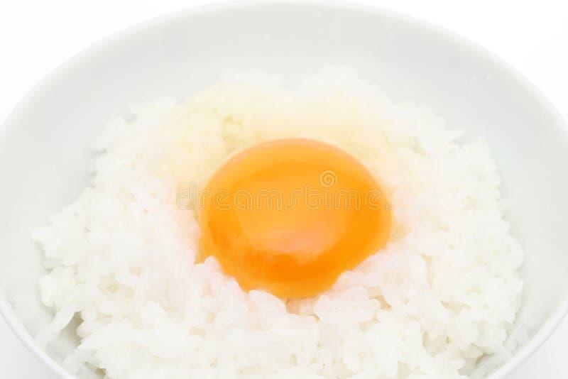 Surowy jajko na ryż fotografia royalty free