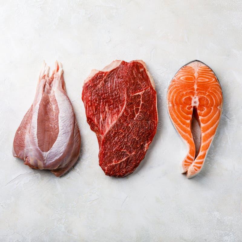 Surowy karmowy indyczy mięso, wołowiny mięso i Łososiowy wazeliniarski rybi stek, obraz royalty free