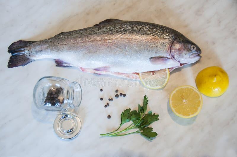 Surowy pstrąg z świeżą pietruszką, plasterki cytryna, szklany słój z czarnego pieprzu grochami na marmurowym tle Świeży rybi nacz zdjęcie stock