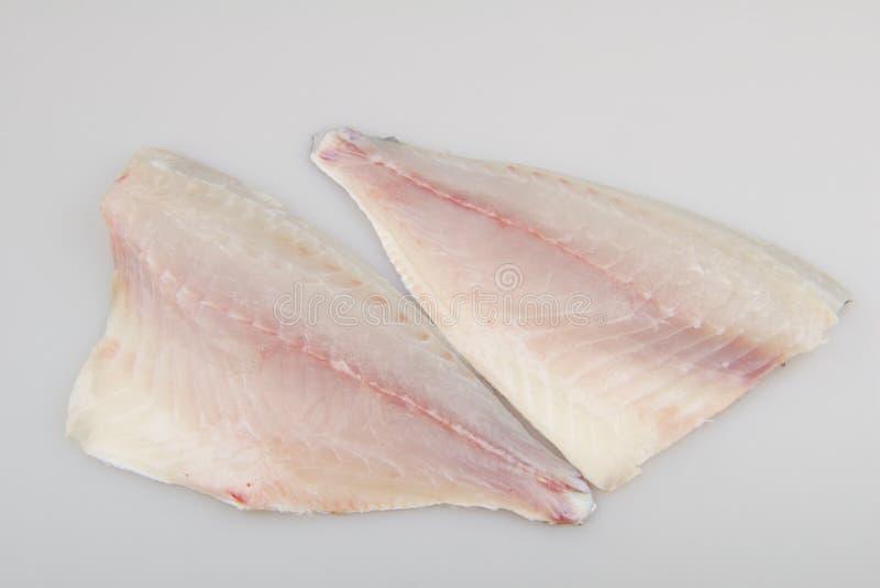 Surowy rybi polędwicowy seabream obrazy stock