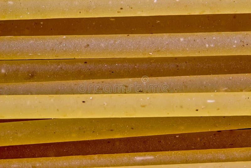 Surowy spaghetti makaron - Makro- fotografia spaghetti makaron fotografia stock
