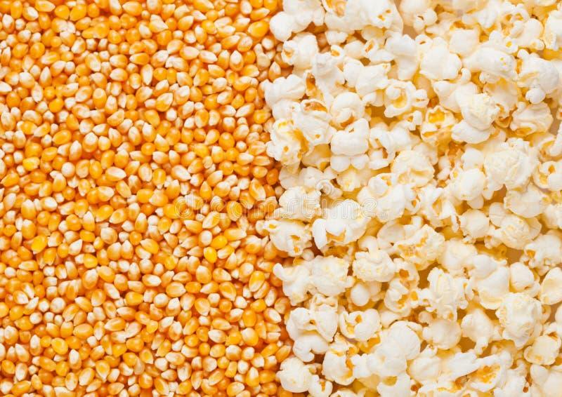 Surowy złoty słodkiej kukurudzy i popkornu ziaren połówki talerz zdjęcie royalty free
