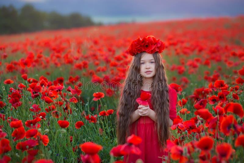 Surpresa perto acima do retrato da menina romântica nova bonito bonita com a flor da papoila à disposição que levanta no fundo do foto de stock