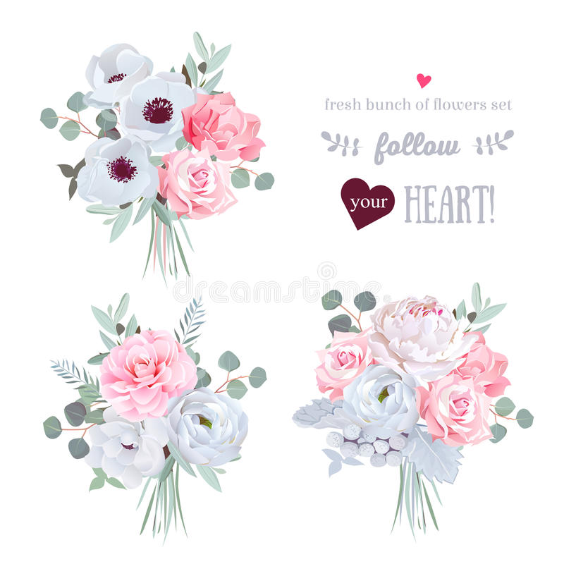 Surprise bouquets of rose, peony, anemone, camellia, brunia flowers and eucalyptus leaves. Vector design set. All elements are isolated and editable royalty free illustration