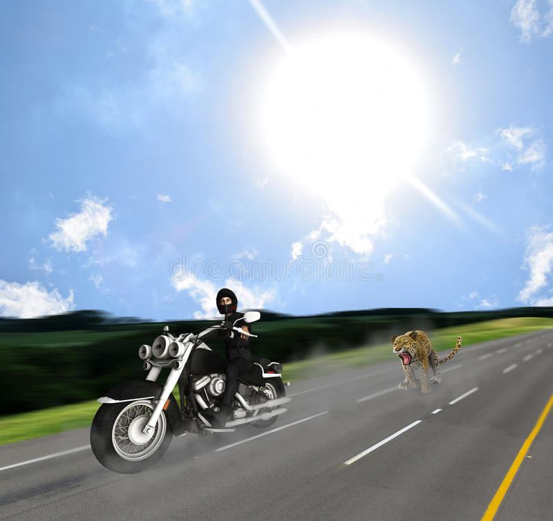 Surprised Biker Chase By Jaguar On Road. A biker is stunned to see a Jaguar chasing him from the side mirror stock illustration