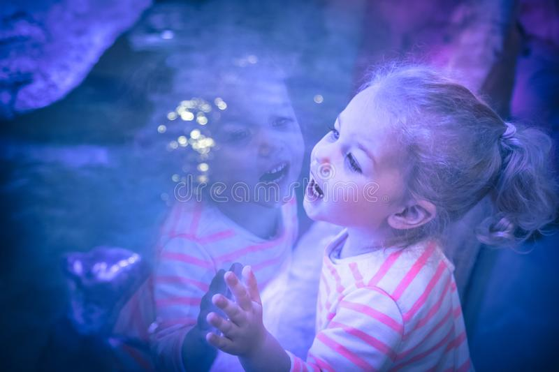 Surprised excited beautiful child girl looking with admiration through aquarium glass in blue purple colors concept admiration ama. Surprised excited beautiful stock image