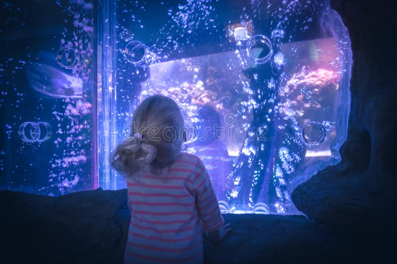Surprised excited child looking with admiration lilac blue futuristic water view like portal into another reality concept admirat. Surprised excited child royalty free stock images