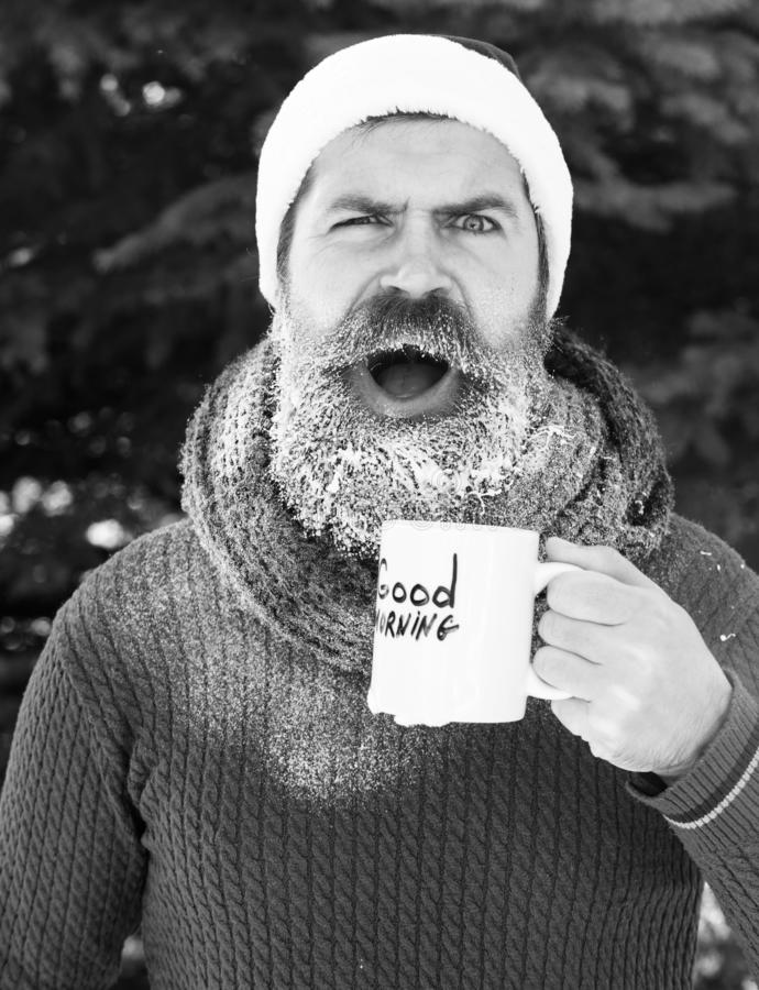Surprised handsome man in santa claus hat, bearded hipster with beard and moustache drinks from cup with good morning royalty free stock photo