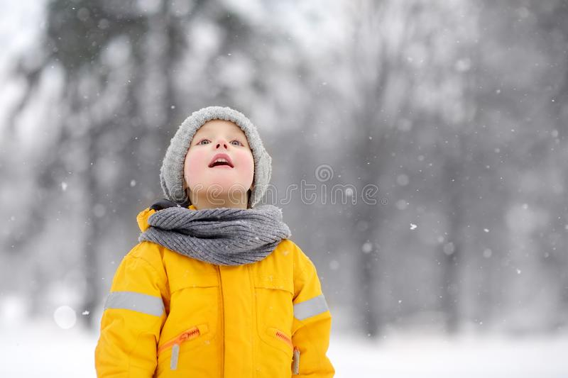 Surprised little boy in yellow winter clothes walks during a snowfall royalty free stock image