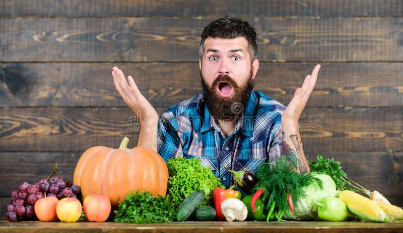 Surprised man chef with rich autumn crop. organic and natural food. happy halloween. seasonal vitamin food. Useful fruit. Surprised men chef with rich autumn stock photography