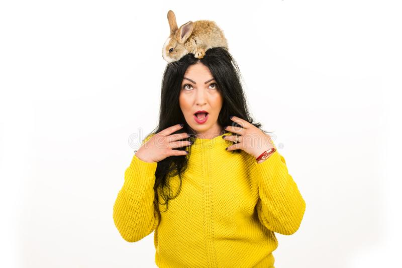 Surprised woman with bunny in her hair. Surprised woman with little rabbit on her hair isolated on white background royalty free stock images