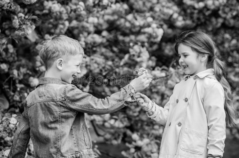 Surprising her. Kids enjoying pink cherry blossom. Romantic babies. Giving all flowers to her. Couple kids on flowers of stock photography