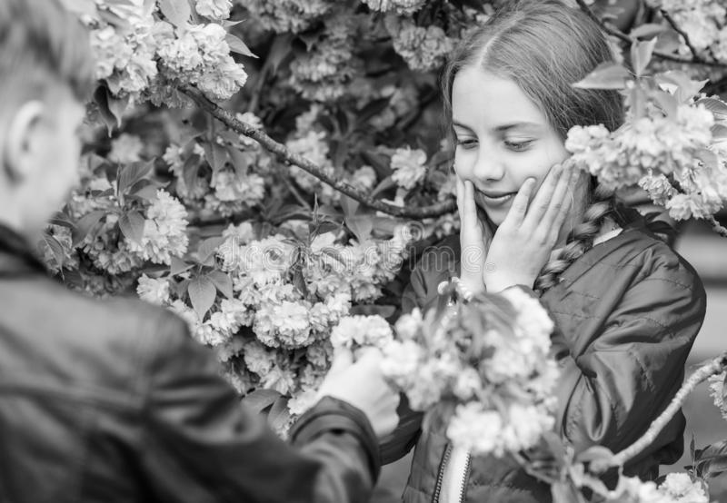 Surprising her. Romantic teens. Kids enjoying pink cherry blossom. Tender bloom. Couple kids on flowers of sakura tree royalty free stock photo