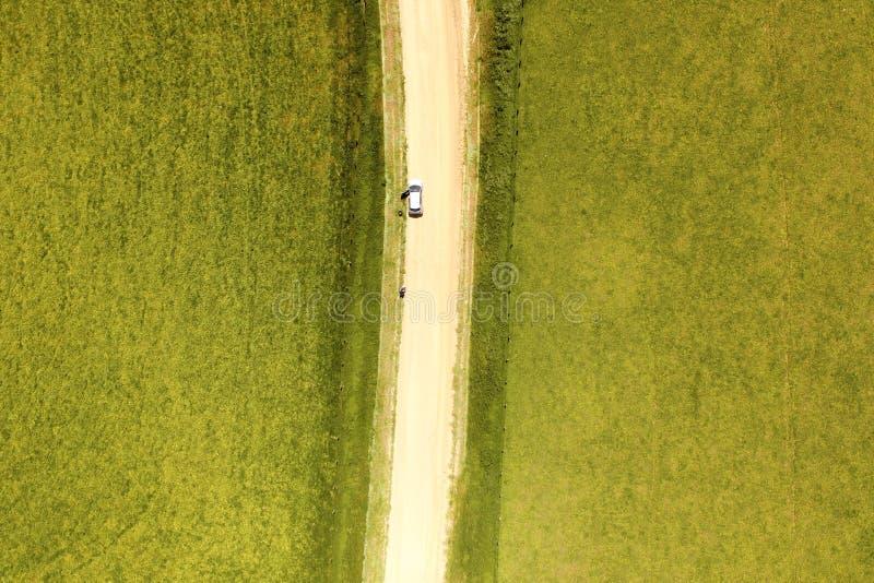 Surra bilden av ett fält, en väg och en bil arkivfoto