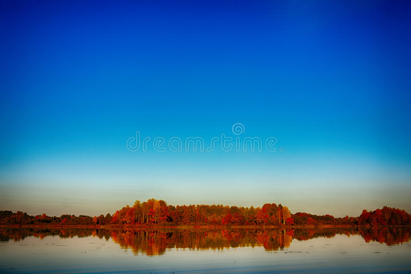 Surreal autumn of yellow trees with reflection on lake stock photos