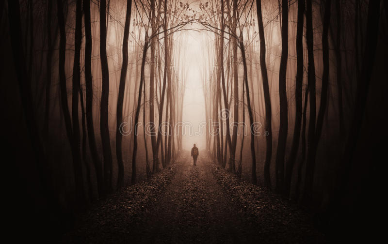 Download Surreal Dark Forest With Man Walking In Fog Stock Image - Image of mood, eerie: 37184321