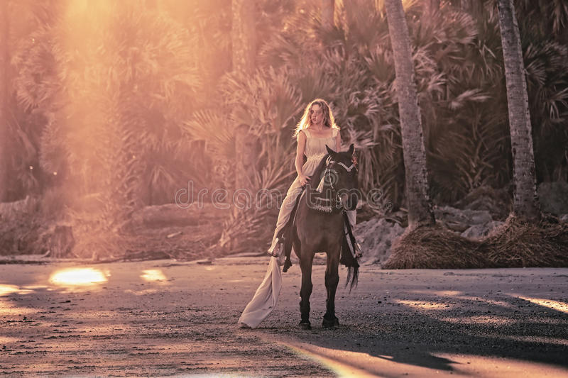 Surreal dream scene of woman on horse royalty free stock photo