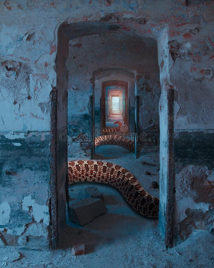 Surreal dreamy imaginary with infinity doors in old ruin with scary rattlesnake coils, Punta Rossa, Caprera, Sardegna stock photo