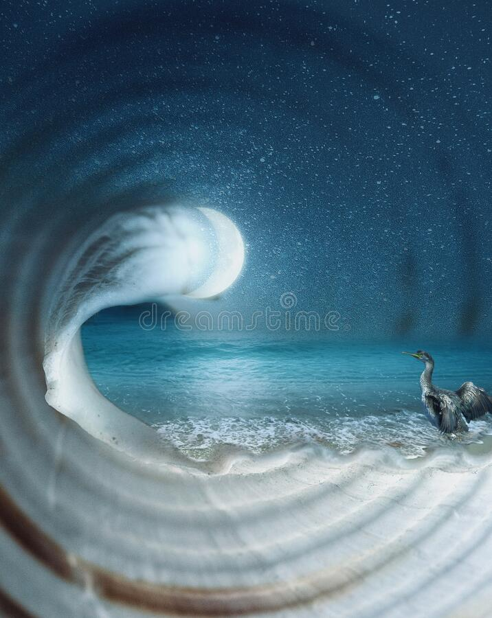 Surreal dreamy imaginary sea landscape inside an empty nautilus shell, night scene with starry sky and moon stock images