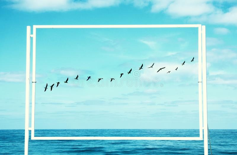 Surreal enigmatic picture of flying birds and frame . beach landscape.  royalty free stock photos