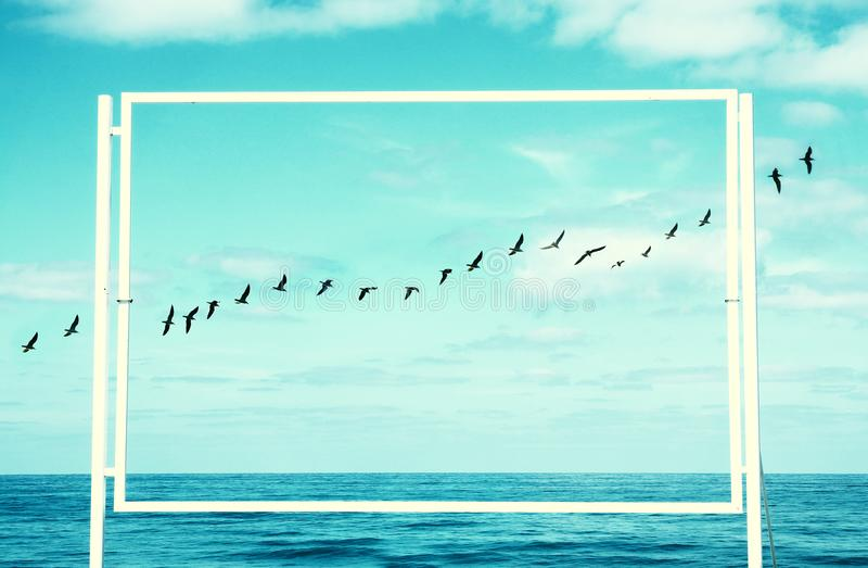surreal enigmatic picture of flying birds and frame . beach landscape stock images