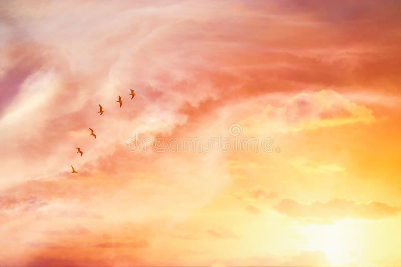 Surreal enigmatic picture of flying birds in sunset or sunrise sky . minimalism and dream concept. Surreal enigmatic picture of flying birds in sunset or royalty free stock photos