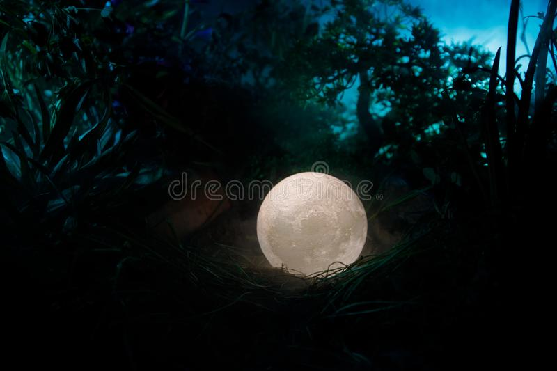 Surreal fantasy concept - full moon lying in grass. Decorated photo. Abstract fairy backgrounds . Selective focus stock image