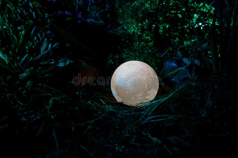 Surreal fantasy concept - full moon lying in grass. Decorated photo. Abstract fairy backgrounds . Selective focus stock photos