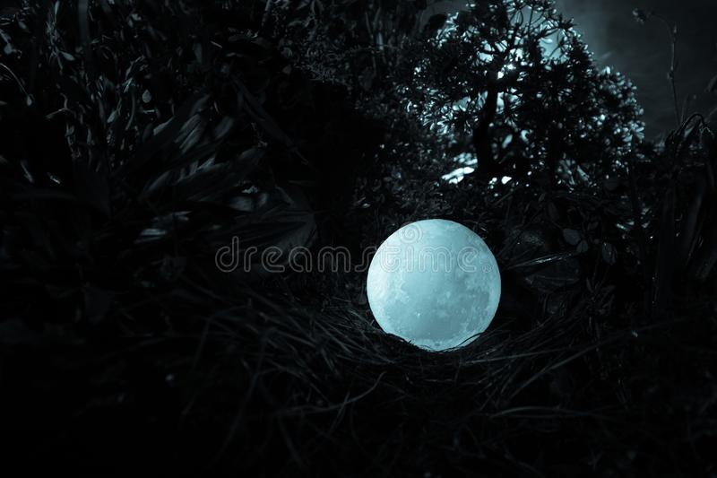 Surreal fantasy concept - full moon lying in grass. Decorated photo. Abstract fairy backgrounds . Selective focus royalty free stock photography