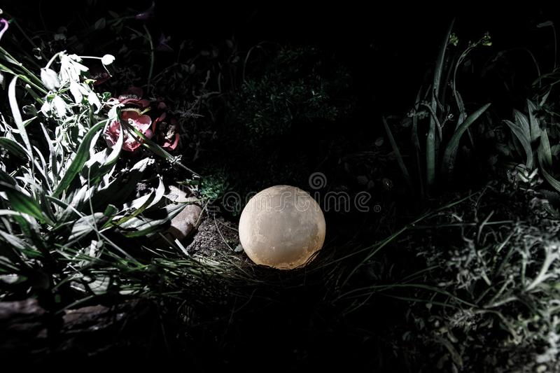 Surreal fantasy concept - full moon lying in grass. Decorated photo. Abstract fairy backgrounds . Selective focus royalty free stock image