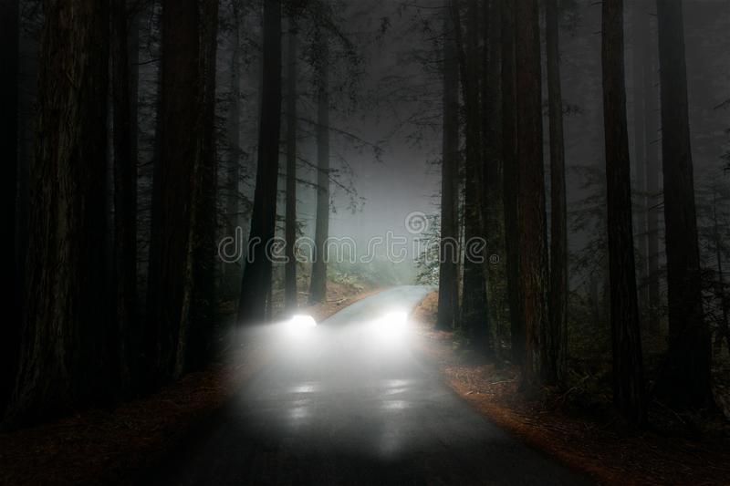 Surreal Ghost Car, Woods, Road, Darkness, Background. A surreal ghost car driving through the dark woods or forest. The automobile is invisible as it drives stock photo
