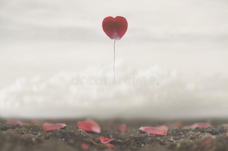 Surreal image of a rose petal shaped like a heart flying free in the sky. A surreal image of a rose petal shaped like a heart flying free in the sky stock photography